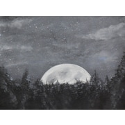 Diamond Decor Wall Art Starry Night Over the Moon 24 x 32 in. (EDC056CL)