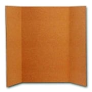 Flipside 36 x 48 in. Reusable Project Cork Board, Natural( SSPC50610)