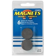 Master Magnetics Inc 6 Count 1 in. Ceramic Disc Magnets( JNSN51914)