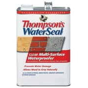 Thompsons 1 Gallon Clear WaterSeal Multi-Surface Waterproofer - Pack of 4 (JNSN44978)