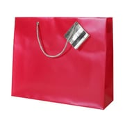JAM Paper® Plastic Gift Bags, Large Horizontal, 13 x 10 x 5, Red Opaque, 6/pack (462000a)