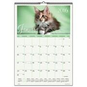 At-A-Glance Kittens Wall Calendar (AZTY01387)