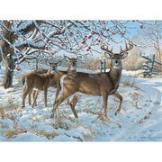 Outset Media Games Winter Deer- 500 Piece Puzzle (GC23481)