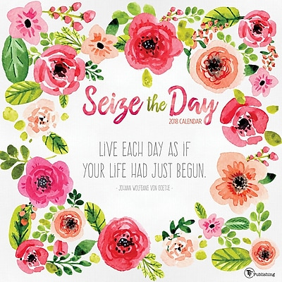 Tf Publishing 2018 Seize The Day Wall Calendar (18-1041) 23975080