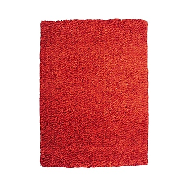 Powell® Bombay 2' x 3' Luxe Shag Hand Tufted Rug, Burnt Orange