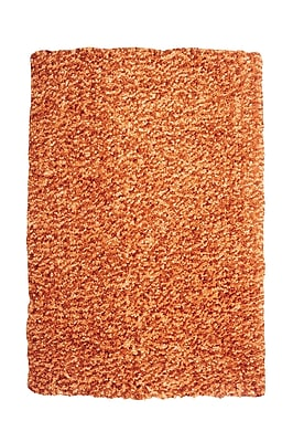 Powell® Bombay 2' x 3' Luxe Shag Hand Tufted Rug, Russet
