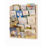 Whitney Brothers Wall Book Display, Natural