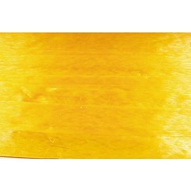 Shamrock Wraphia® 100 yds. Pearlized Nylon Ribbon, Daffodil