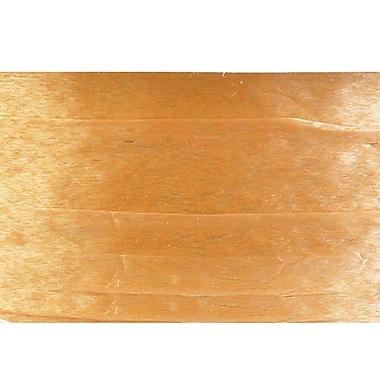 Shamrock Wraphia® 100 yds. Pearlized Nylon Ribbon, Gold