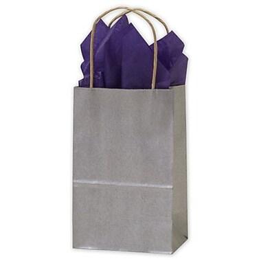 Sacs de magasinage en kraft métallisé, 5 1/4 x 3 1/2 x 8 1/4 (po), argenté, 250/paquet