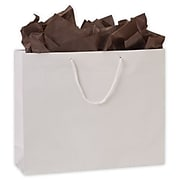 "Bags & Bows® 16"" x 4-3/4"" x 13"" Gloss Laminated Euro-Shoppers, White, 100/Pack"