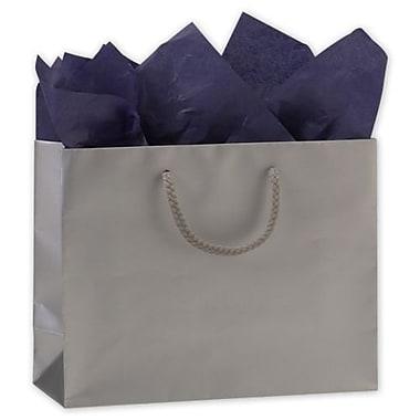 Sacs de magasinage mats plastifiés, 7 x 9 x 3 1/2 po, argenté, 200/paquet