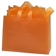 """Bags & Bows® 16"""" x 6"""" x 12"""" Frosted High Density Shoppers, 250/Pack (268-160612-35)"""