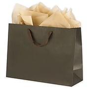"Bags & Bows® 12"" x 16"" x 6"" Manhattan Eco Euro-Shoppers, 100/Pack (5844-0315)"