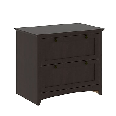 Bush Furniture Buena Vista 2 Drawer Lateral File, Madison Cherry (MY13880-03)
