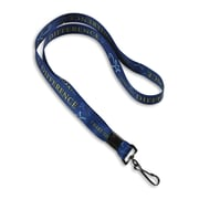 """IDville 1346696STC31 36"""" I Make the Difference Lanyards, Blue 10/Pack"""