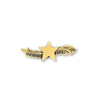 Lapel Pin, Star Dream Service Star