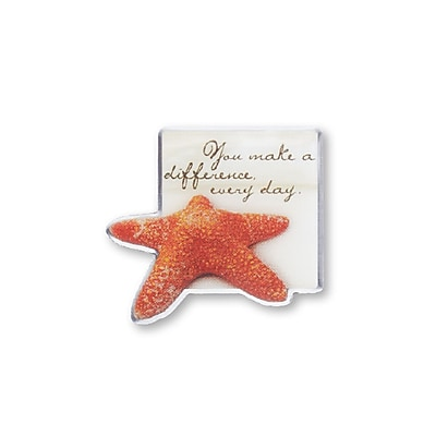 Baudville® Lapel Pin, Starfish Making the Difference Sand Star