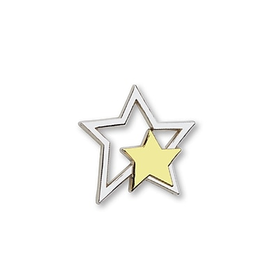 Baudville® Lapel Pin, Silver Star With Gold Star