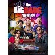 The Big Bang Theory: The Complete Fifth Season (DVD)