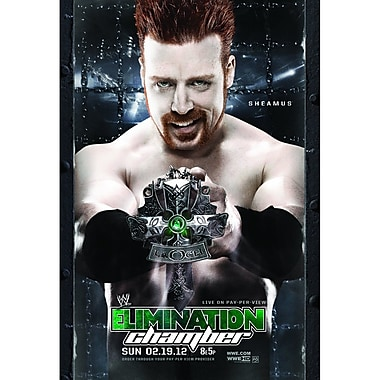 WWE 2012: Elimination Chamber 2012: Milwaukee, Wi: February 19, 2012 Ppv (DVD)