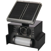 P3 Solar Animal Chaser (P3IP7815)