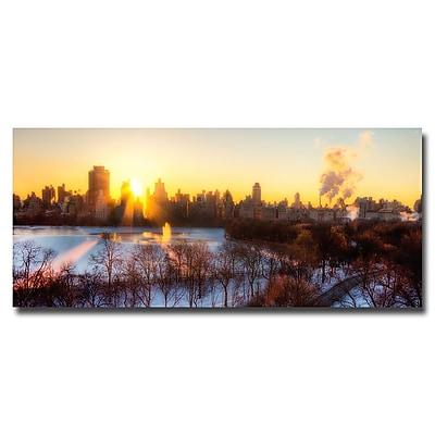 Trademark Fine Art Ariane Moshayedi 'NYC Rising' Canvas Art 14x32 Inches