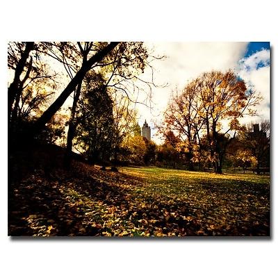 Trademark Fine Art Ariane Moshayedi 'Fall is Here' Canvas Art 30x47 Inches
