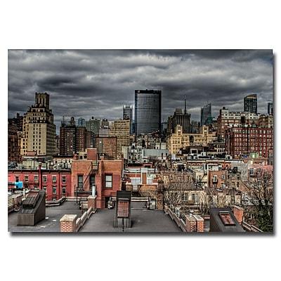 Trademark Fine Art Ariane Moshayedi 'Chelsea' Canvas Art 30x47 Inches
