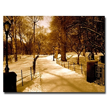 Trademark Fine Art Ariane Moshayedi 'Winter Playground' Canvas Art 18x24 Inches