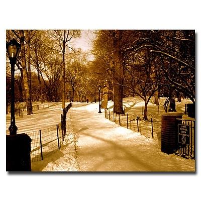 Trademark Fine Art Ariane Moshayedi 'Winter Playground' Canvas Art 18x24 Inches