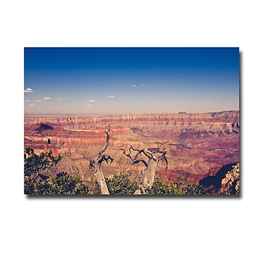 Trademark Fine Art Ariane Moshayedi 'Pink Canyons' Canvas Art 30x47 Inches