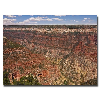 Trademark Fine Art Ariane Moshayedi 'Green Canyons' Canvas Art 16x24 Inches