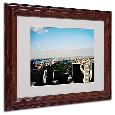 Ariane Moshayedi 'NYC Skies' Matted Framed Art - 11x14 Inches - Wood Frame