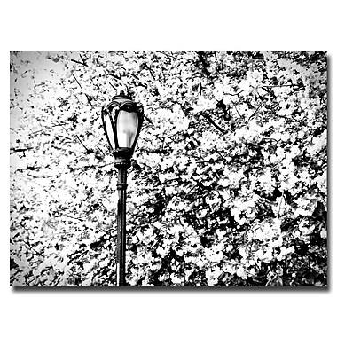 Trademark Fine Art Ariane Moshayedi 'Streetlamp' Canvas Art 22x32 Inches