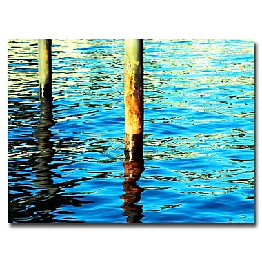 Trademark Fine Art Ariane Moshayedi 'High Tide' Canvas Art 30x47 Inches