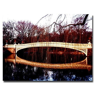Trademark Fine Art Ariane Moshayedi 'The Bridge' Canvas Art 18x24 Inches