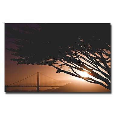 Trademark Fine Art Ariane Moshayedi 'Golden Gate Safari' Canvas Art 30x47 Inches
