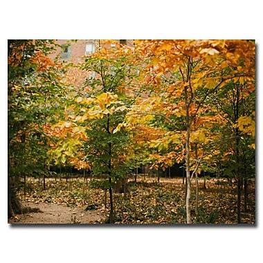 Trademark Fine Art Ariane Moshayedi 'Backyard Color' Canvas Art 22x32 Inches