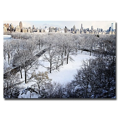 Trademark Fine Art Ariane Moshayedi 'Snow Covered Park' Canvas Art 16x24 Inches