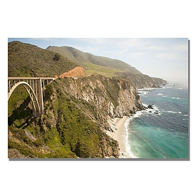 Trademark Fine Art Ariane Moshayedi 'Big Sur Coast II' Canvas Art 22x32 Inches