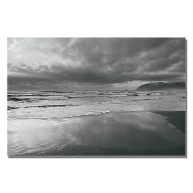 Trademark Fine Art Ariane Moshayedi 'Costal Reflections' Canvas Art 22x32 Inches