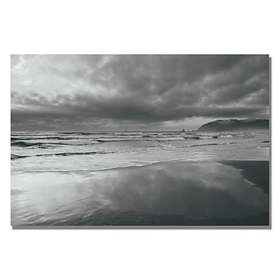 Trademark Fine Art Ariane Moshayedi 'Costal Reflections' Canvas Art 16x24 Inches