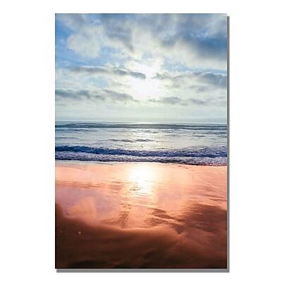 Trademark Fine Art Ariane Moshayedi 'Costal Reflections III' Canvas Art 22x32 Inches