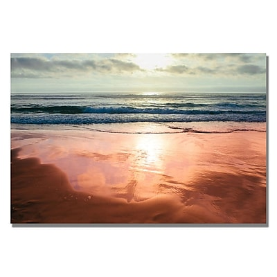 Trademark Fine Art Ariane Moshayedi 'Costal Reflections IV' Canvas Art 16x24 Inches