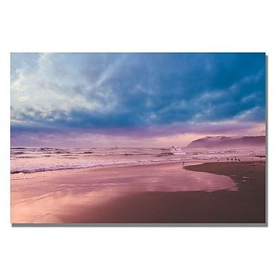 Trademark Fine Art Ariane Moshayedi 'Color Reflections' Canvas 16x24 Inches