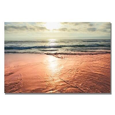 Trademark Fine Art Ariane Moshayedi 'Sunset Beach Reflections' Canvas Art 22x32 Inches