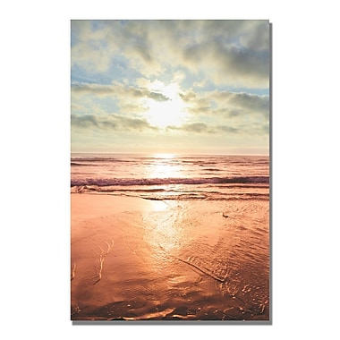 Trademark Fine Art Ariane Moshayedi 'Sunset Beach Reflections II' Canvas Art 35x47 Inches