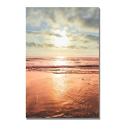 Trademark Fine Art Ariane Moshayedi 'Sunset Beach Reflections II' Canvas Art 35x47 Inches