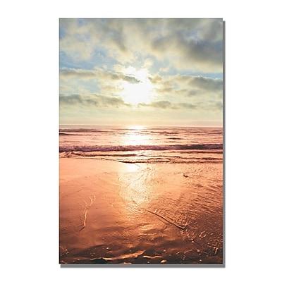 Trademark Fine Art Ariane Moshayedi 'Beach Reflections' Canvas Art 35x47 Inches